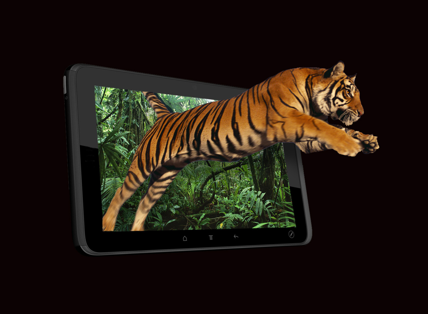 3D Display On Your Tablet