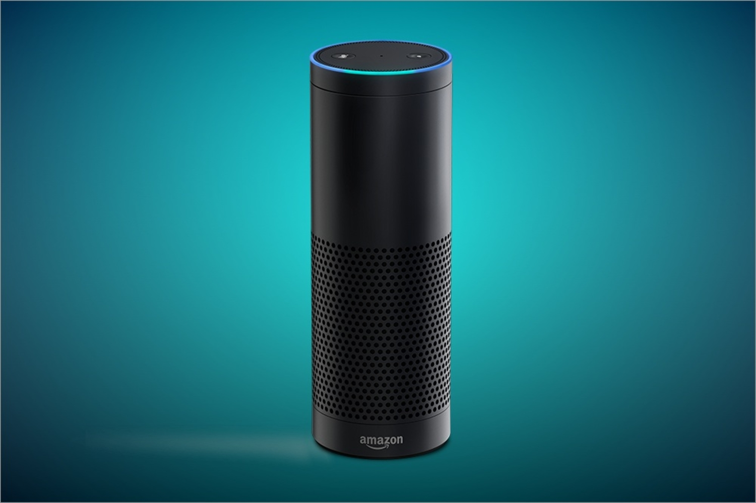Is The Amazon Echo Amazing, Or Just Plain Annoying?
