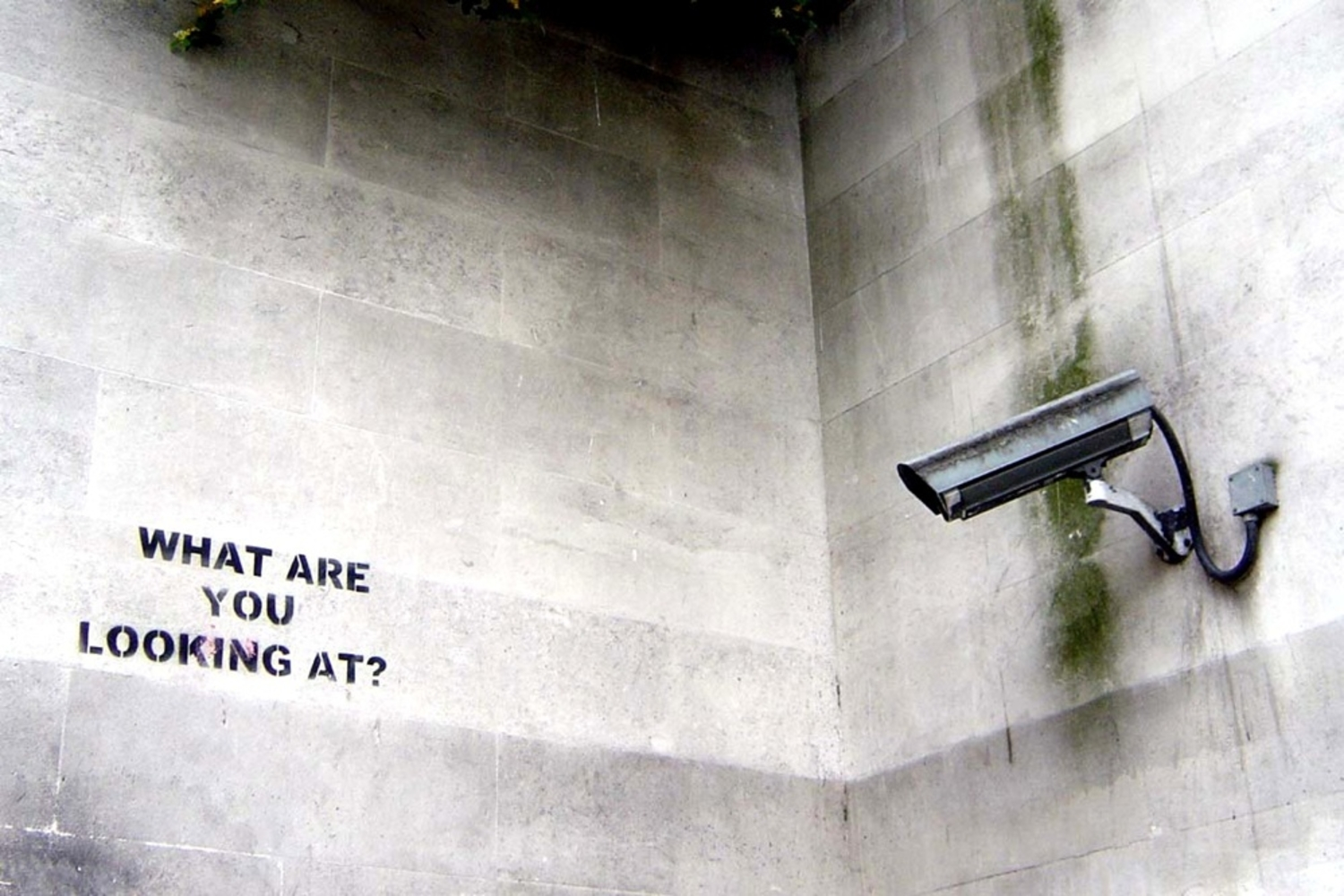People Are Scared To Talk About The NSA Online