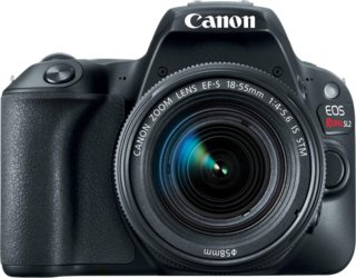 Canon EOS Rebel SL2 + Canon EF-S 18-55mm f/4-5.6 IS STM