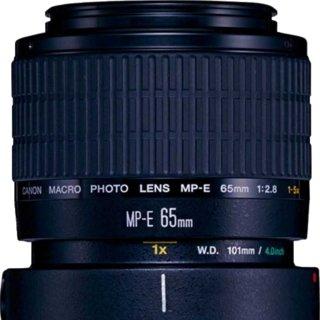 Canon MP-E 65mm F/2.8 1-5x Macro Photo