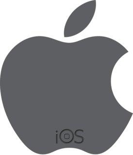 iOS 3.1.3