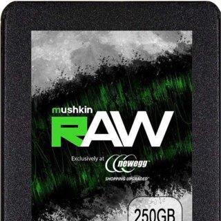 Mushkin Raw 250GB