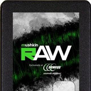 Mushkin Raw 500GB