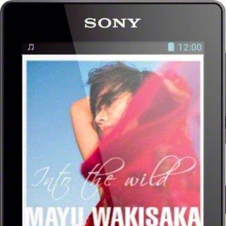 Sony NWZ-F806BLK