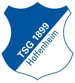 TSG 1899 Hoffenheim 2017/18